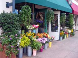 Los Angeles Flowers .com Best Selling Flowers